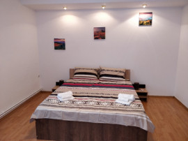 Apartament 3 camere in regim hotelier Turnisor