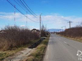 Teren intravilan 2513 mp situat in Targu Jiu, Ana Ipatescu