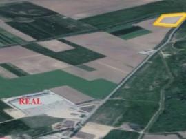 Teren zona Real Oradea, 5 ha, fs=300m