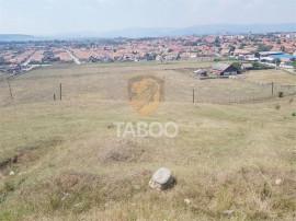 Teren extravilan 37800 mp de in Sebes judetul Alba