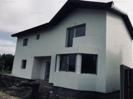 Vila Tudor Vladimirescu Domnesti-Central