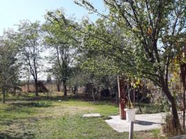 Proprietate -4100 mp si casa de 110 mp Oras Chitila