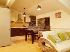 Apartament 2 camere in vila, cartier Andrei Muresanu