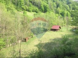 Teren si cabana Transalpina - Sugag