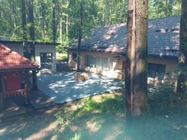 Domeniu pădure cabană spa Fersig, Maramures