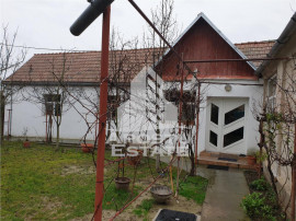Casa spatioasa in Remetea Mare, teren 800 mp.