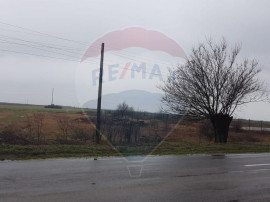 Teren intravilan Fintanele Arad,5000 mp,front stradal 50 ml.