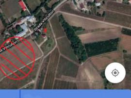 [ ID 35 /T ] Viticultori / capat Copou / 1200 mp teren -