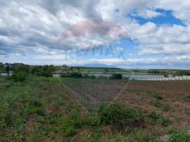 Teren 1820 mp cu deschidere lac Snagov zona Ciofliceni