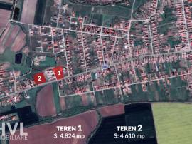 Teren intravilan Zadareni-Bodrogu Nou-posibilitate 2305mp