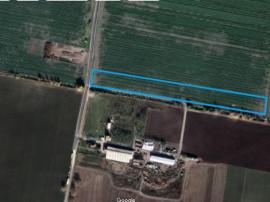 Teren Caciulati/Linia Teilor , 16.300 mp, D:39 m, comision 0