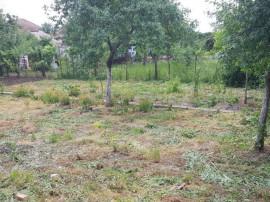 Teren 500 mp. zona Aradul Nou - ID : RH-9007-property