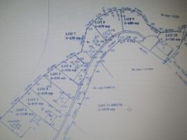Terenuri pt constructii locuinte sau case vacanta 6000 mp
