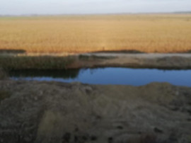 Teren delta- dunavatul de jos 2000mp