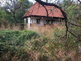 Casa Dumbrăvița