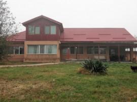 Casa P+M Letca Veche, teren 1.587 mp