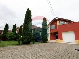 Casă / Vilă cu 6 camere de vânzare în zona Micesti
