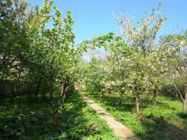 Vanzare 1000 mp teren Sector 5 Bucuresti intre case noi u...