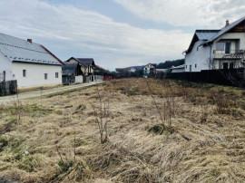 Teren Intravilan 2456 mp - Bascov - Valea Ursului