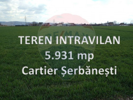 Vanzare - Teren 5,931mp Bacau / Strada Dorului
