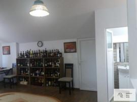 Casa Colentina Andronache