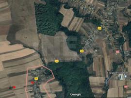 Teren pretabil ferma/casa cu acces la utilitați in Costesti