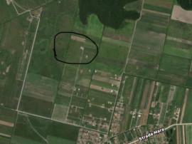 Teren Intravilan pentru Construcție, Mosnita Noua, PUZ NOU
