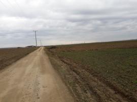 Teren extravilan zona metropolitana Oradea -Biharia 20 000mp
