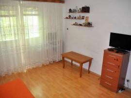Apartament 2camere pta Sudului Lunca Barzesti,Ionescu Florea