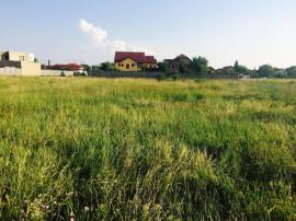 Teren de casă la 35 euro/mp, Arad, Micălaca