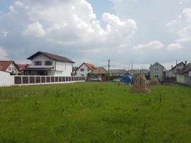 Teren Selimbar strada Tiajului 2000 mp