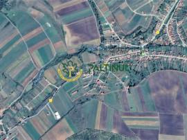 Teren 4400 mp in sat Hamba