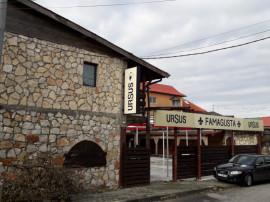 Pensiune cu restaurant si terasa in Vama Veche