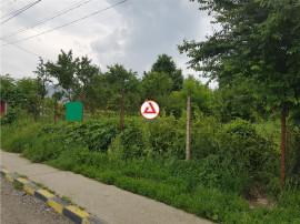 Teren Serbanesti, Bacau