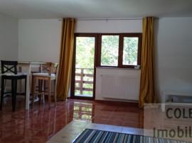 Apartament Busteni