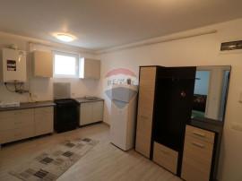Apartament cu 2 camere la demisol in Buna Ziua. Comision 0%