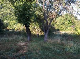 Bran, Castel, teren intravilan, 4421 mp