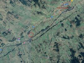 Teren intravilan 10.000 mp Neagra Sarului - 3001284