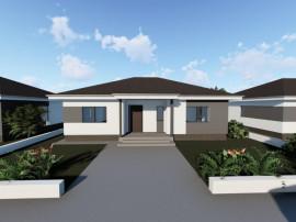 Vila Domnesti / ansamblu de case cu placa beton