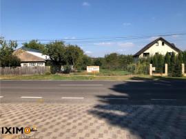 Teren Stradal Parc Dendrologic Hemeius