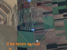 De vânzare teren extravilan 20700 mp în Curtici