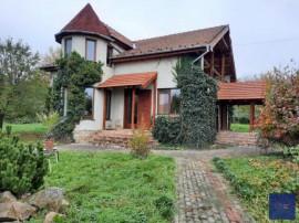 Vila Minis, la poalele dealului, finalizata in anul 2010,...