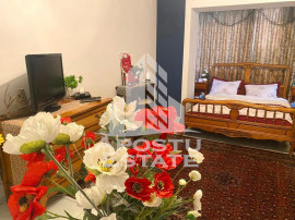 Apartament cu o camera, Simion Barnutiu