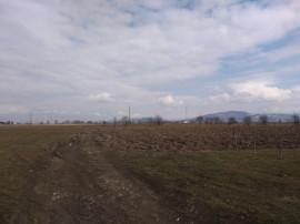 Teren intravilan, 6772 mp in Lunca Calnicului