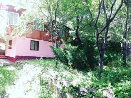 Casa de vacanta Bisoca