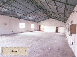 Spatiu comercial 680 mp. in Sebis - ID : RH-8786-property