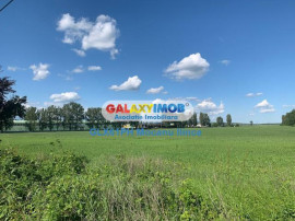 Teren industrial, 8000 mp, in Ploiesti, zona Lukoil
