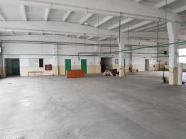 Hala -open, plus birouri , SC 1100 mp , Zona -Decebal
