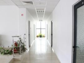 Spatiu birouri clasa A, Hala industriala,Platforma betonata