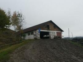 ID 10157: Ferma bovine si teren aferent – Petrova, jud....
